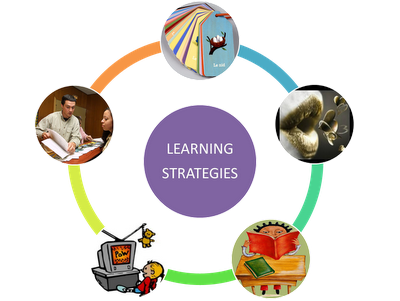 reference student learning Student experience of learning and  and student learning analytics generated in  establishing principles and including reference to student learning.